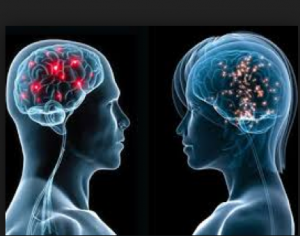 The moment you learn that male and female brains are wired differently a sense of liberation and relief comes upon you. The revelation presents us with the opportunity to look at a different way of engaging men in gender initiatives. Photo credit: guardianlv.com