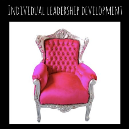 Individual leadership training