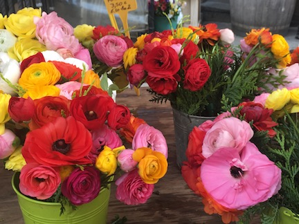 While traveling solo, I love to visit farmers markets and flower markets. You may find produce you've never seen before!