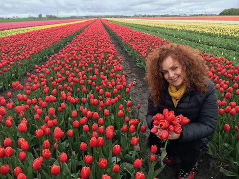 In Amsterdam, while traveling solo doing a home exchange, I visited beautiful tulip fields.