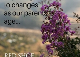 Adjusting to our elderly parents needs