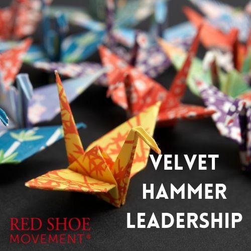 Velvet hammer leadership